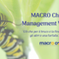 Macro Change Management